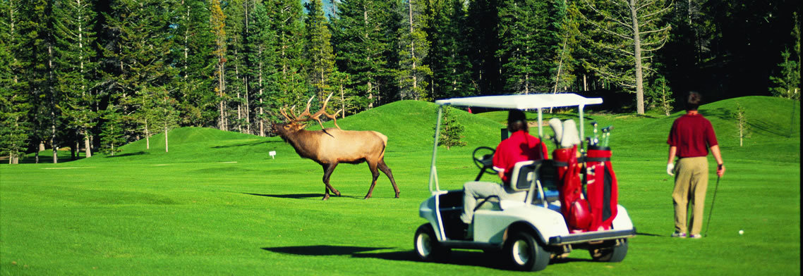 Banff Springs Golf Resort - Banff, AB